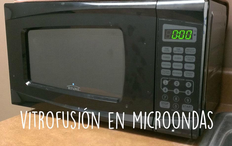 Horno para microondas de vitrofusíon ¿Cómo usarlo?